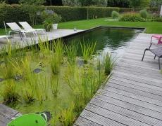 Bladgoud Tuinen zorgt voor een origineel tuinontwerp